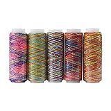 Delaman 5pcs Hilo de Coser, Multicolor Degradado de Costura Acolchado Bordado Hilo Carretes Accesorio de la Ropa