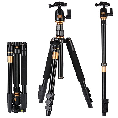 XCSOURCE Q-555 Trípode Monopod Rotula...