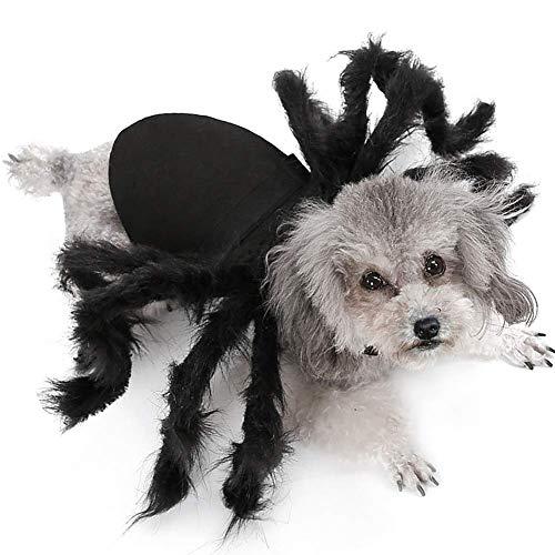 Trajes asustadizos Tarantula de Halloween for perros de perrito Gatos Trajes, divertido araa de Cosplay del vestido Traje, Da de los animales domsticos muertos decoracin de los accesorios, Gato ZZ