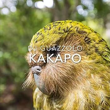 Kakapo (Warm Up Mix)