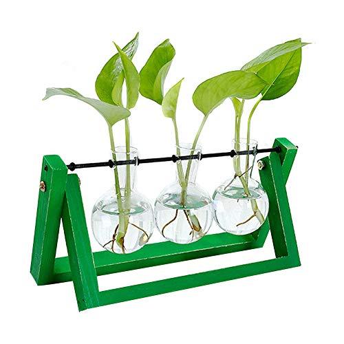 Alaojie Hydroponic Glass Planter Bulb - Vaso con supporto in legno per tablet