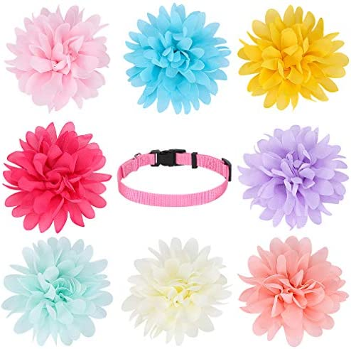 Dog Collar Flowers Accessory 8 Pack with a Basic Pink Collar Valentine s Day Pet Charms Flower product image