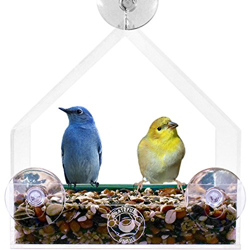 Grateful Gnome - Giant Window Bird Feeder - Clear Acrylic House for...