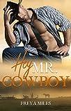Hey, Mr. Cowboy