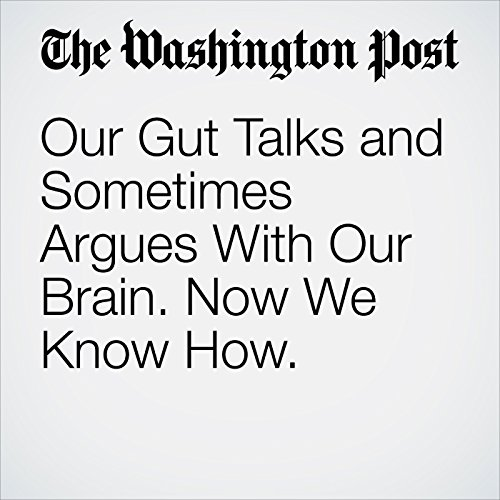 Our Gut Talks and Sometimes Argues With Our Brain. Now We Know How. copertina