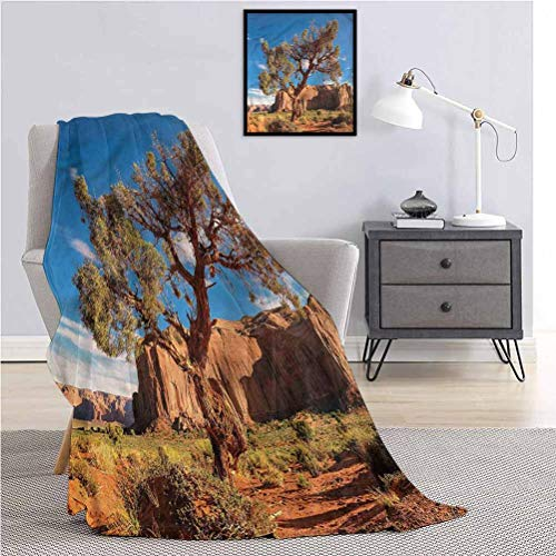 Luoiaax Western Fluffy Plush is Soft and comfortableDead Alive Bounty Poster Throw The daybed Office Camp W91 x L60 Inch
