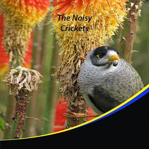 The Noisy Crickets