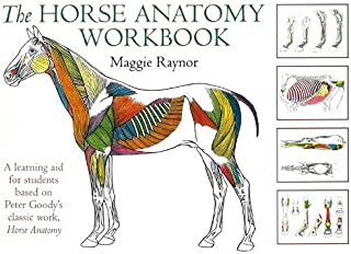 Horse Anatomy Workbook: A Learning Aid for Students Based on Peter Goody's Classic Work, Horse Anatomy