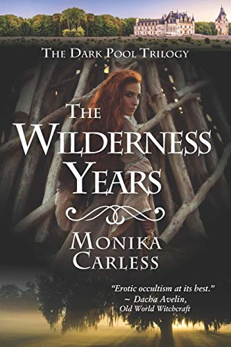 The Wilderness Years (The Dark Pool Trilogy, Band 3)