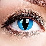 Farbige Kontaktlinsen Ohne Stärke Cheshire Cat Blue Linsen Halloween Karneval Fasching Cosplay Crazy Blaue Augen Anime Blau Motivlinsen Cat Eye Cateye Katzen Katze Schlange