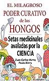 EL MILAGROSO PODER CURATIVO DE LOS HONGOS: SETAS MEDICINALES ABALADAS POR LA CIENCIA