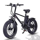 Bicicleta Eléctrica de 20' para Hombres de Motor 48V 750W con Batería de Litio 15Ah, Neumáticos Gordos, Shimano 7 Velocidades, Velocidad máxima 45 km/h, Amigo Fiable para Explorar [EU Warehouse]