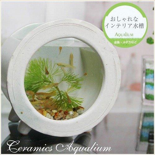 信楽焼 水槽丸型ミニ(白色) 水槽 すいそう スイソウ 陶器 金魚鉢 水鉢 陶器 su-0211 (白色)