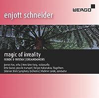 Schneider: Magic of Irreality