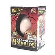 Rhode Island Novelty Hatching Dinosaur Egg by Papillon Gift