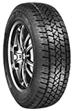 Arctic Claw Winter Txi M+S Radial Tire - 175/70R14 84S