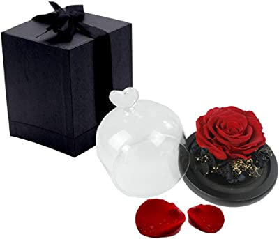 Abuyall Eternal Rose in Glass Dome Love Gfit Preserved Flower for Valentine Day Red