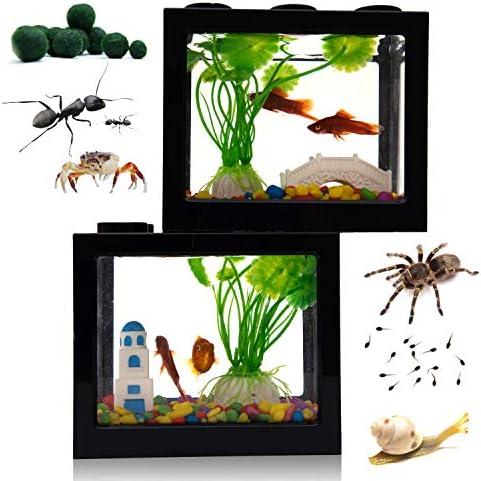 Small Betta Fish Tank Fish Bow Aquarium with Gravel Plants Rocks Feeder Small Fish Tank for product image