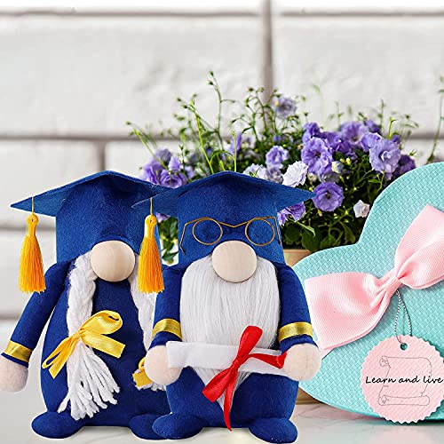 Gnome 2021 - Decoración de peluche sueco Gnome, diseño escandinavo, graduación de 2021