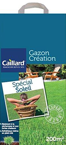 Caillard PFSC19777 Graines de Gazon Spécial Soleil 5 kg 200 m²