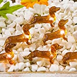 Impress Life Pet Theme Decorative String Lights, 10ft 30 LED Dachshund Dog Twinkle Lights, USB Battery Operated with Remote for Indoor Covered Outdoor Wedding Birthday Christmas Parties Ornament