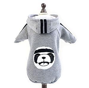 Pegasus Panda en polaire à capuche d'hiver chaud pour petit chien chat chiot Pet vêtements veste pour femme coatume Apparel