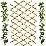 Celosia Madera Bambú Extensible 180 x 60 | Valla De Madera Bambú para Jardín Extensible Enrejado Enredadera Jardinera De Pared Único y Elegante