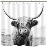 Riyidecor Bull Duschvorhang Hochland Kuh, 12 Stück Metallhaken, Tier-Wildtiere, lustige Skizze Milch Wasserdichter Stoff, Moderne Mode Polyester Badezimmer-Dekor-Set 182,9 x 182,9 cm