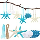 20 Pieces Resin Seashell Starfish Ornaments Sand Dollar Hanging Decorations with Rope and Blue Ribbon for Beach Wedding Party Christmas Tree Ornaments DIY Craft Decorations