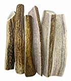 WhiteTail Naturals | Grade A, Split Red Stag Deer Antlers for Dogs | (6 Pack Medium) | Organic Cruelty Free | Naturally Shed Elk Dog Chew Bones