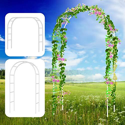 Bilisder Arco per Piante in Metallo 240 * 140cm Arco per Rosa Rampicanti, Decorazione Giardino, Garden Pergolas Arco da Giardino Sostegno
