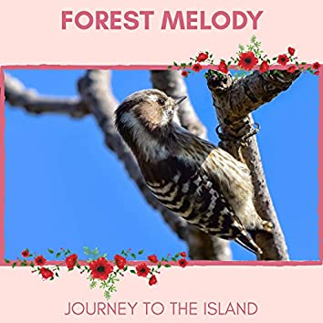 Forest Melody - Journey to The Island