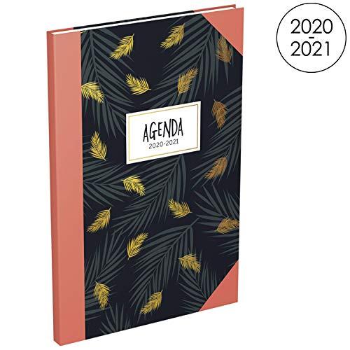 LECAS - Agenda Millenium 16 mesi di settembre 2020, dic 2021, formato 16 x 24 cm, settimanale, 160 pagine, copertina semi rigida, motivo palma