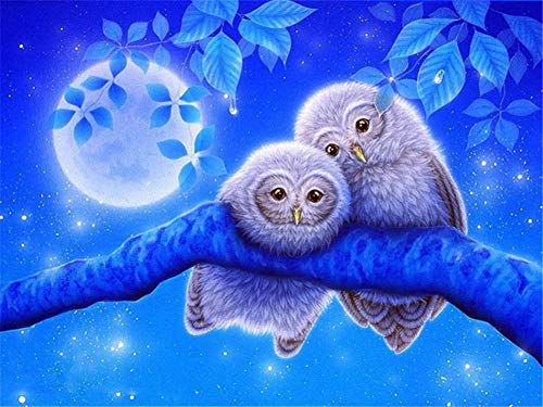 DIY 5D Diamond Painting Kits Full Drill,Crystal Rhinestone Cross Stitch Diamond Painting Adults/Kids Mosaic Pictures Embroidery Art Craft for Home Wall Decor(Moon Owl 80x100cm/32x40in Round Drill)