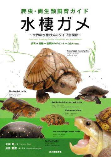 爬虫・両生類飼育ガイド 水棲ガメ―世界の水棲ガメのタイプ別飼育 飼育+繁殖+種類別のポイント+Q&A etc.の詳細を見る