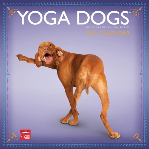 Yoga Dogs 2013 - Joga-Hunde - Original BrownTrout-Kalender