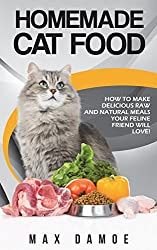 homemade cat food for beginners