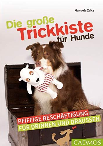 Die große Trickkiste für Hunde: Pfiffige Beschäftigung für drinnen und draußen