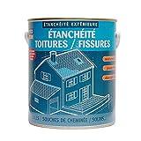 Peinture d'étanchéité toiture, réparation tuiles, fissures, anti-fuites, anti-mousse, décore, protège, plusieurs coloris PROCOM 2.5 litres Blanc
