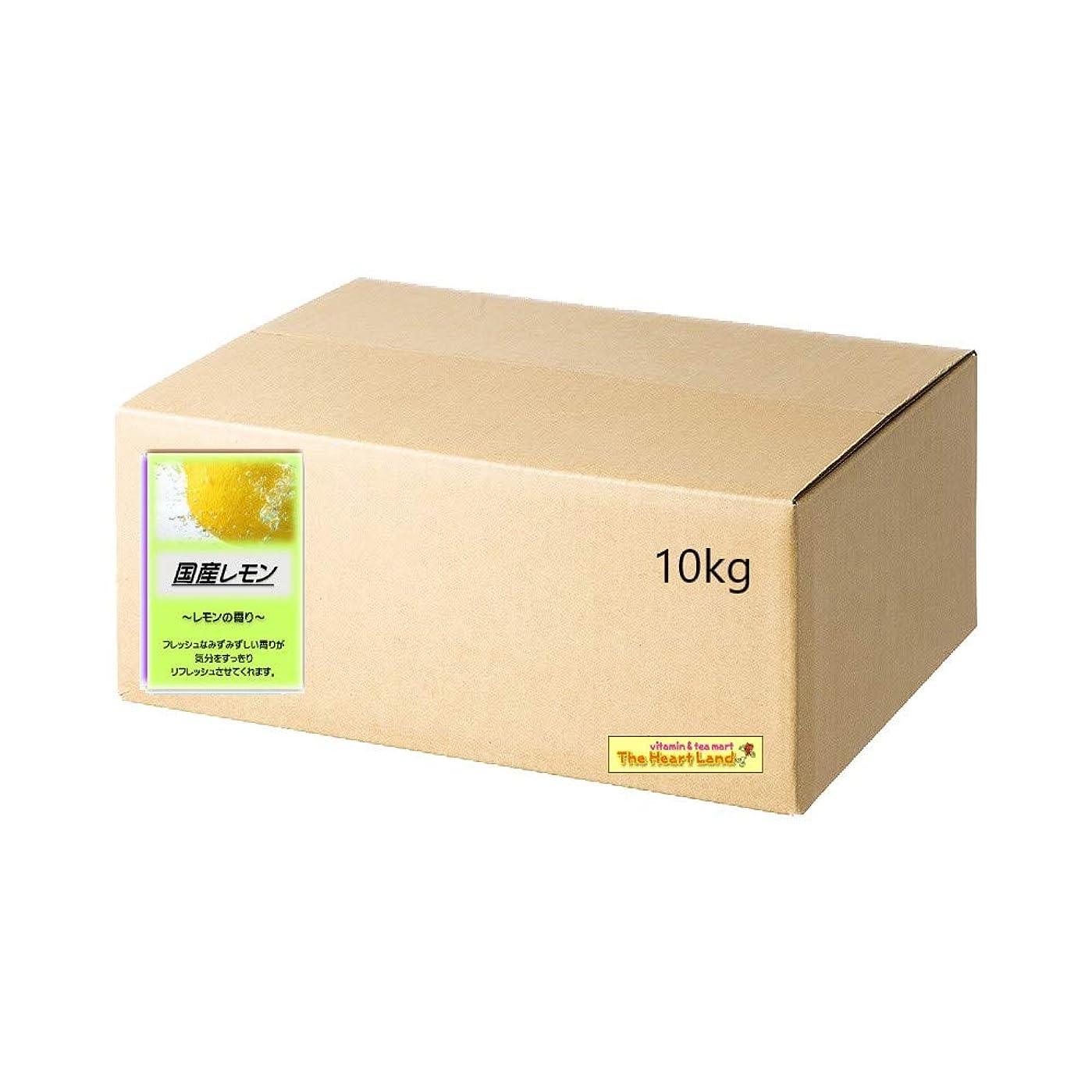 考えジャニス悪いアサヒ入浴剤 浴用入浴化粧品 国産レモン 10kg