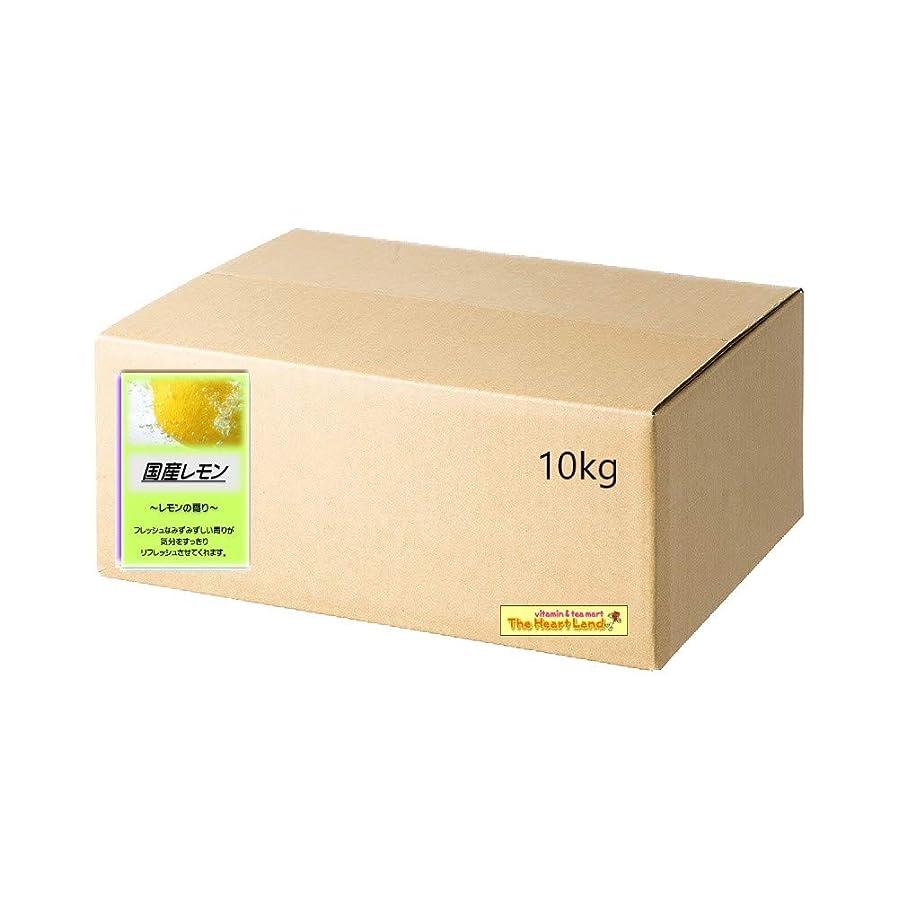 退屈させる艦隊テキストアサヒ入浴剤 浴用入浴化粧品 国産レモン 10kg