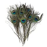 Creny 20Pcs Peacock Feather 10-12inch(25-30cm) for Home Wedding Decoration/Party/DIY