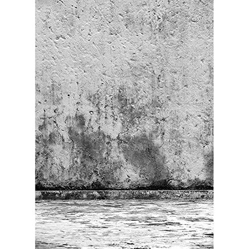 Accesorios de Fondo de fotografía Fondo de Estudio de fotografía de Retrato Retro Fondo de Foto de Vinilo A17 9x6ft / 2.7x1.8m