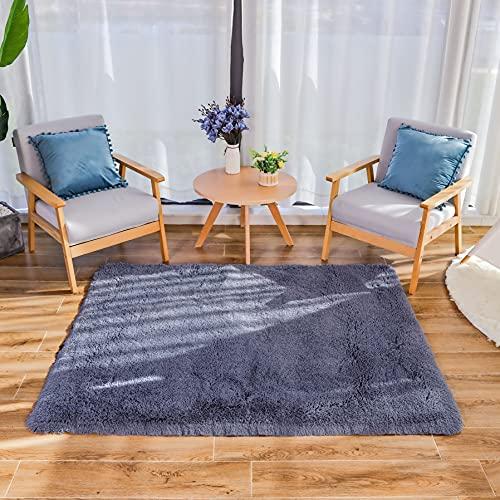 HEXIN Alfombra de Terciopelo,Alfombra de área Peluda Suave Alfombras mullidas de Interior Modernas, cómodas alfombras de Sala de Estar, Alfombra de Dormitorio(Gris-Plateado, 80x160cm)