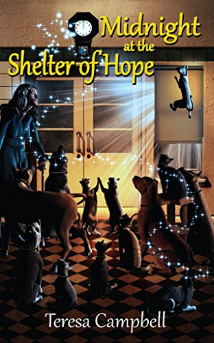 Midnight at the Shelter of Hope