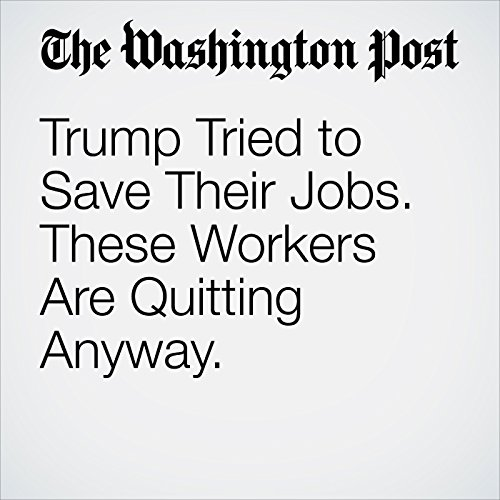Trump Tried to Save Their Jobs. These Workers Are Quitting Anyway. copertina