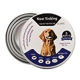 LAOYE Collar de pulgas - 8 Meses de protección el Collar de Perro con Longitud Ajustable para Todas Las Edades de Perros el Collar antipulgas de Perro el Collar antiparasitos Perro pequeño