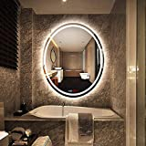500x700mm LED Illuminated Bathroom Mirror Light,...
