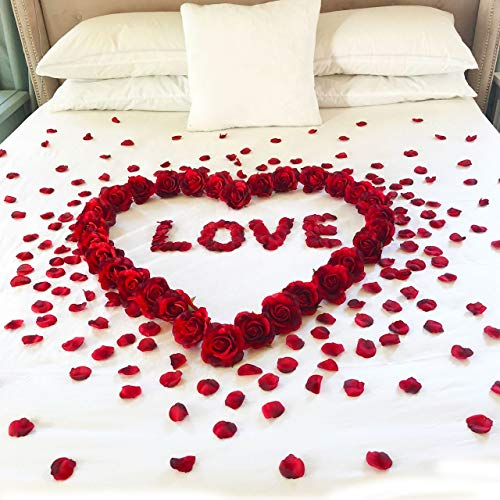 Red Roses & Petals & Love - Valentine's Day - Romantic Night for Her - Wedding Honeymoon