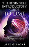 The Beginners Introductory Guide To DMT -  Psychedelics And The Dimethyltryptamine Molecule (Psychedelic Curiosity Book 2) (English Edition)